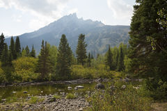 Teton Mountains from Cottonwood Creek, Jackson Hole, Wyoming. royalty free stock image
