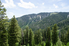 Teton pass stock images