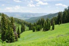 Teton pass stock photo