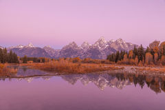 Teton Reflection in Fall at Sunrise Stock Photography