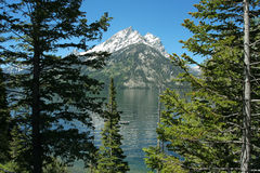 Teton reflection, Jenny Lake. Jenny Lake, Grand Tetons National Park, Wyoming Royalty Free Stock Image
