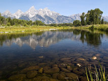 Teton Reflection at Schwabacher's Landing royalty free stock image