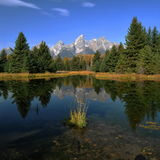 Teton Reflections Royalty Free Stock Images