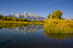 Teton Reflections Stock Images
