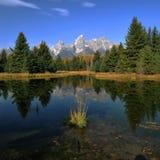 Teton Reflexionen lizenzfreie stockbilder
