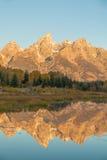 Teton soluppgångreflexion Fotografering för Bildbyråer