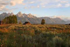 Teton sunrise Royalty Free Stock Image