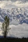 Teton Sunrise Stock Photo
