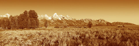Teton uroczysty Park Narodowy, WY Zdjęcia Stock
