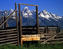 Tetons&Corral#2 Royalty Free Stock Photo