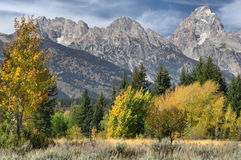 Tetons In The Fall Royalty Free Stock Images