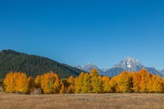 Tetons in fall Stock Photo