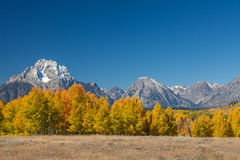 Tetons in Fall Royalty Free Stock Image
