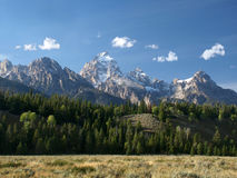 Tetons grand, collines et prairie Images stock
