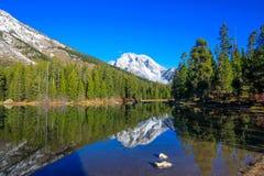 Tetons grand de lac de bourrique Images stock