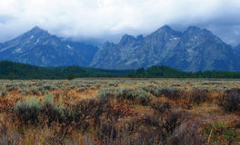 Tetons grands Photos stock