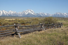 Tetons Meadow Royalty Free Stock Image