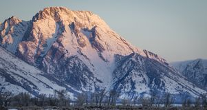 Tetons and Mount Moran in morning Alpenglow. Mount Moran in the Wyoming Teton Range lit by pink alpenglow on a cold winter morning Stock Photography