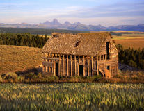 Tetons&OldHouse. An old house, wheat field and the Teton Mountain Range as seen from Idaho Stock Photography