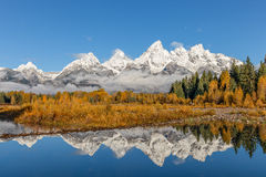 Tetons Reflected in Fall Stock Images