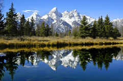 Tetons Reflection In River Royalty Free Stock Photo