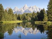 Tetons Reflection, Schwabacher\'s Landing, WY Royalty Free Stock Photography