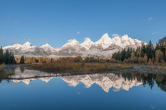 Tetons Sunrise Reflection in Fall Stock Images
