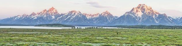 Tetons van Jackson Lake Lodge royalty-vrije stock fotografie