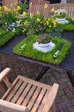 Teträdgård. royaltyfri bild
