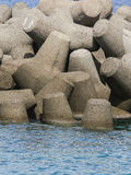 Tetrapodi Fotografia Stock