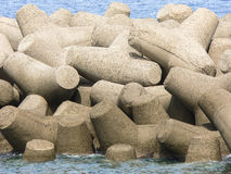 Tetrapods Zdjęcia Stock