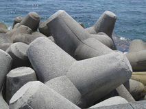 Free Tetrapods Stock Images - 60618594