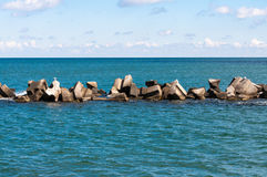 Tetrapods dam in sea water Stock Image