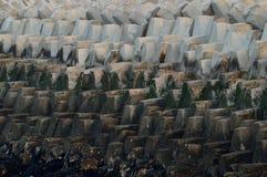 Tetrapods przy schronieniem w Chiny obraz stock