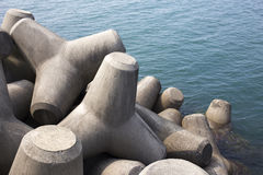 Tetrapods. Stock Photography