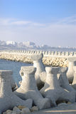 Tetrapods Royalty Free Stock Photos
