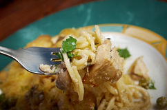 Tetrazzini is an American dish. Spaghetti with chicken, mushrooms and fresh grated parmesan cheese Stock Image
