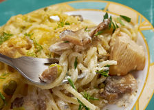Tetrazzini is an American dish. Spaghetti with chicken, mushrooms and fresh grated parmesan cheese Stock Images
