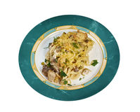 Tetrazzini is an American dish. Spaghetti with chicken, mushrooms and fresh grated parmesan cheese.  Isolated Royalty Free Stock Photography