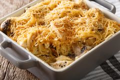 Tetrazzini is an American dish. Spaghetti with chicken, mushroom. S and fresh grated parmesan cheese macro. horizontal Royalty Free Stock Photography