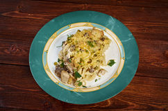 Tetrazzini is an American dish. Spaghetti with chicken, mushrooms and fresh grated parmesan cheese Royalty Free Stock Photos