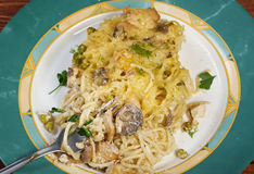 Tetrazzini is an American dish. Spaghetti with chicken, mushrooms and fresh grated parmesan cheese Royalty Free Stock Photo
