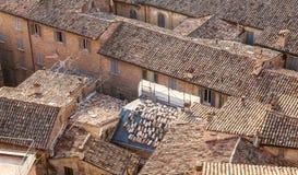 Tetti delle case Urbino L'Italia, Marche Immagini Stock Libere da Diritti