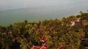 Tetti delle ville in mezzo delle palme Vista del fuco dei tetti tailandesi rossi di stile delle ville di lusso che si nascondono  archivi video
