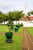 Tetti di Bangkok Fotografia Stock