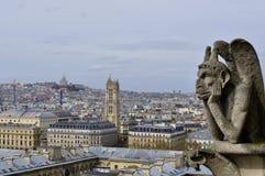 Tetti di Parigi con una vista dell'uccello-occhio da Notre Dame de Paris Immagini Stock