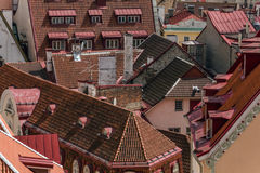 Tetti di Tallinn Fotografie Stock