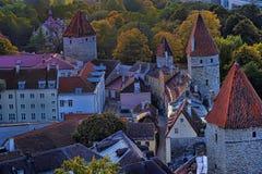 Tetti di Tallinn Estonia Fotografie Stock