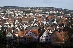 Tetti di Tubinga, la vecchia città Baden-Wurtemberg Fotografia Stock Libera da Diritti