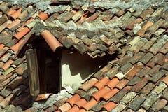 Tetti di vecchia città Cattaro immagine stock libera da diritti
